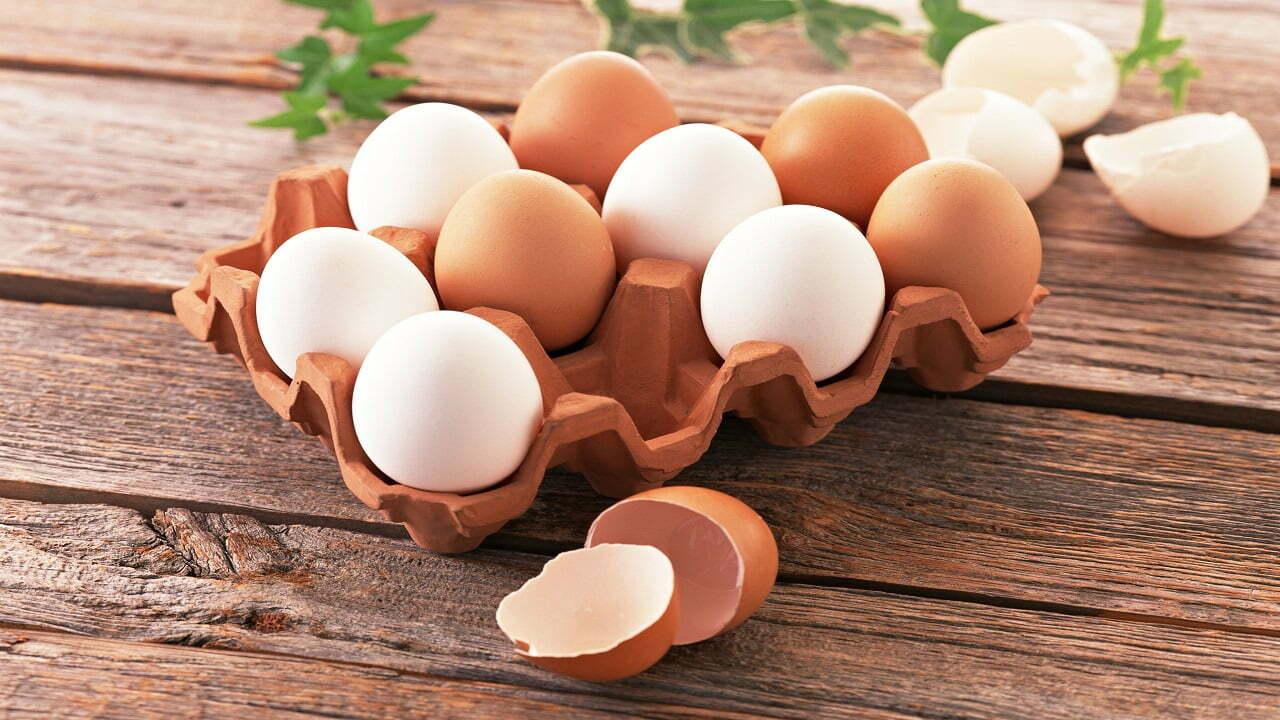 هشدار درباره کاهش تولید تخم مرغ در ماه های آینده